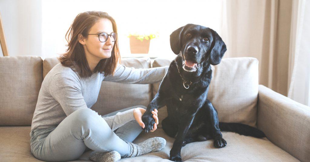 Pet Sitting Jobs at UrbanSitter